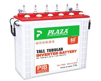 Tall Tubular Inverter Battery